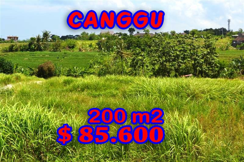 Land-for-sale-in-Canggu-Bali