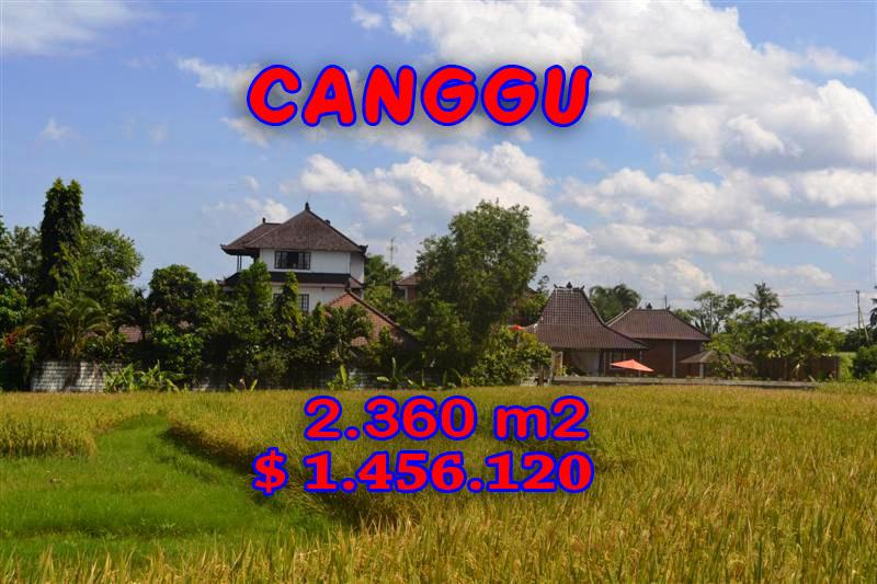 land in Canggu Bali for sale