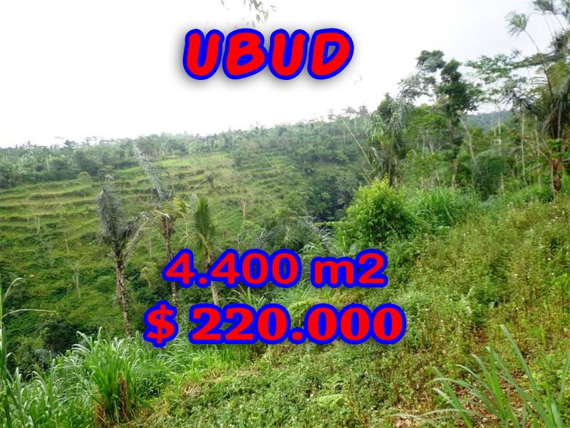 -Ubud-Land-for-sale