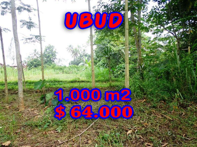 Land sale in Ubud