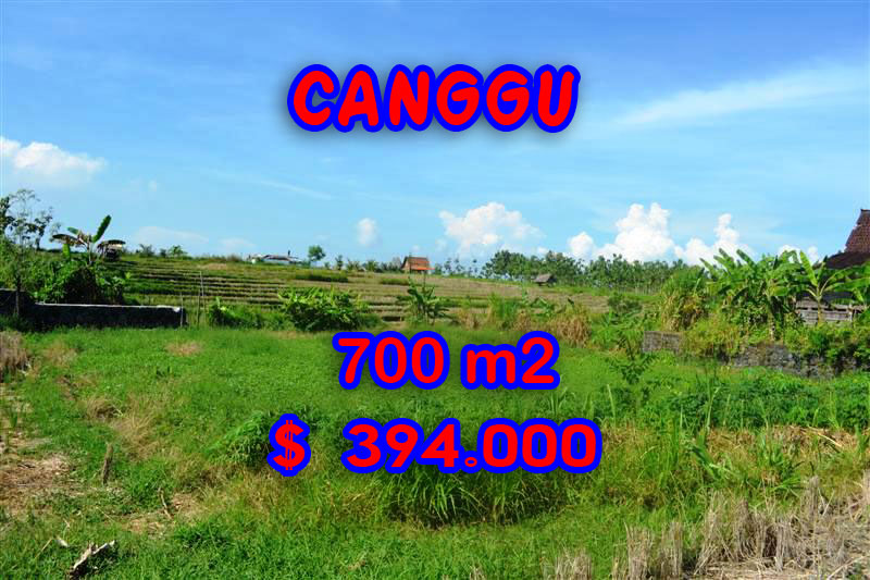 Land sale in Canggu Bali