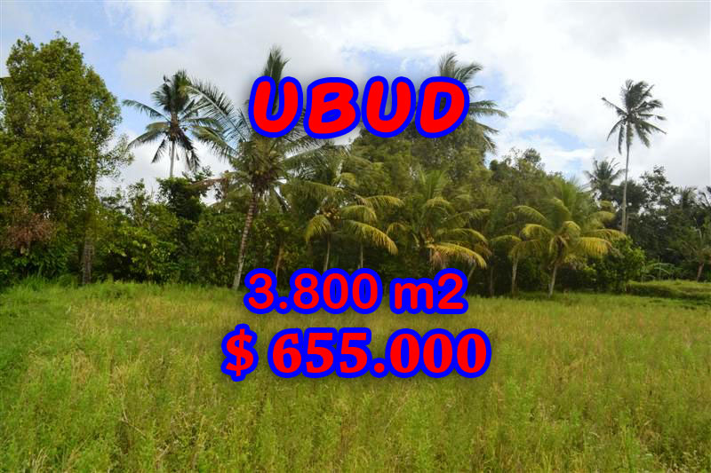 Land for sale in Bali