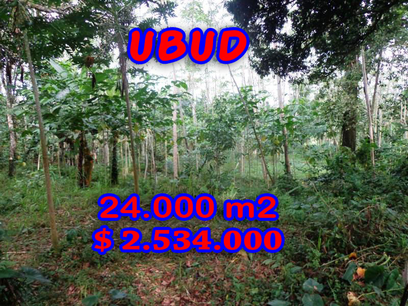 Land-sale-in-Ubud