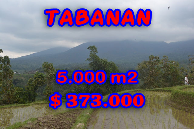 Land for sale inTabanan Bali