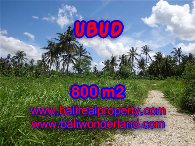 Land for sale in Ubud Bali, Great view in Central Ubud – TJUB352