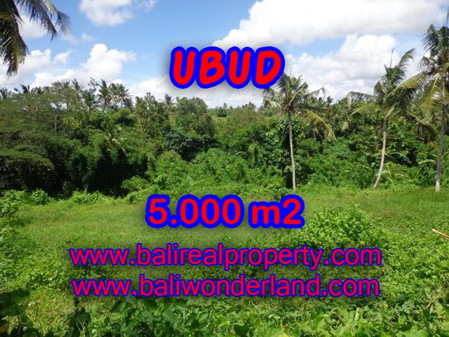 Land for sale in Ubud, Stunning view in Central Ubud Bali – TJUB353