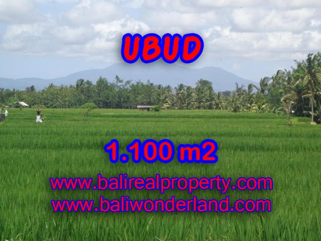 Land in Ubud Bali for sale, Outstanding view in Central Ubud – TJUB354