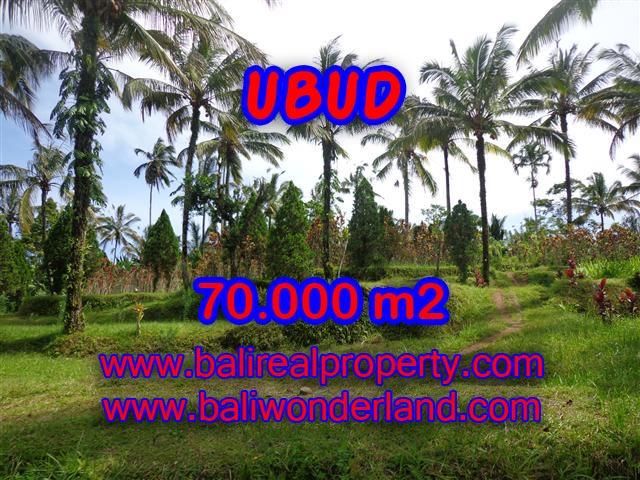 Land for sale in Ubud, Magnificent view in Ubud Payangan Bali – TJUB358