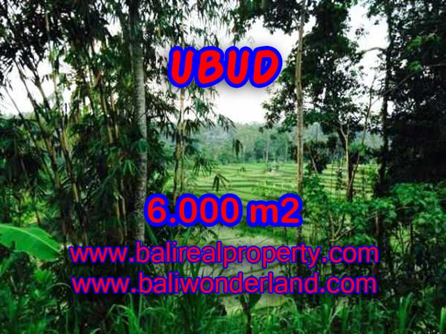 Land in Ubud Bali for sale, nice view in Ubud Center Bali – TJUB349