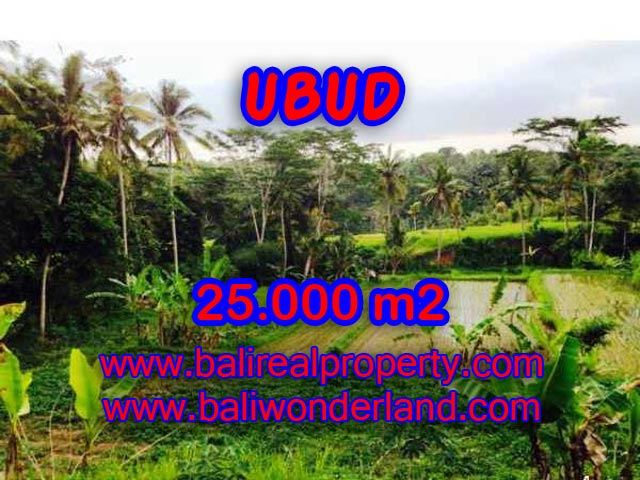 Land in Ubud for sale, Amazing view in Central Ubud Bali – TJUB350