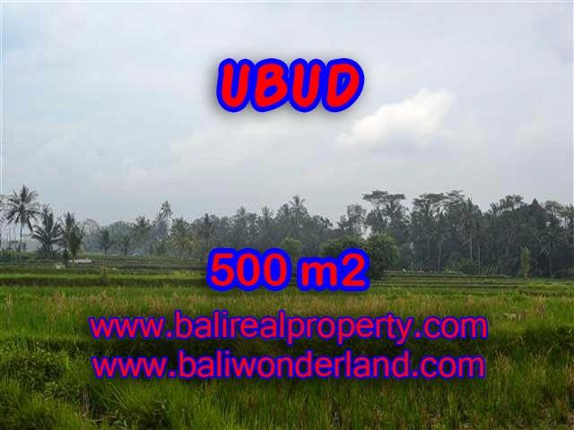 Land for sale in Ubud Bali, Astounding view in Ubud Pejeng – TJUB363
