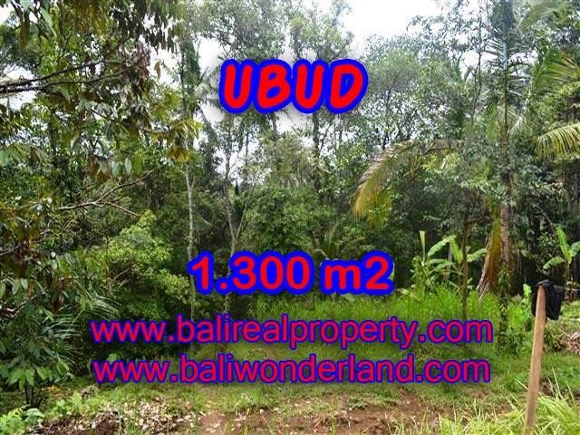 Land for sale in Ubud Bali, Unbelievable view in Ubud Pejeng – TJUB362