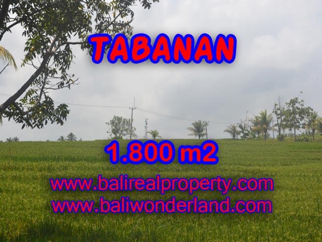 LAND FOR SALE IN TABANAN, Wonderful view in SOKA TABANAN Bali – TJTB083