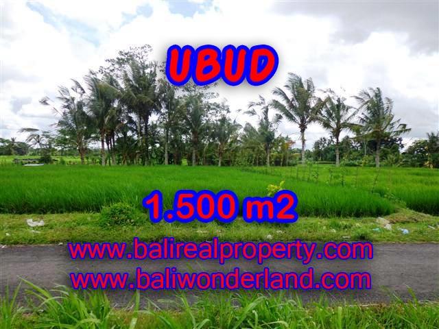 Fantastic Property for sale in Bali, land sale in Ubud Bali – TJUB369