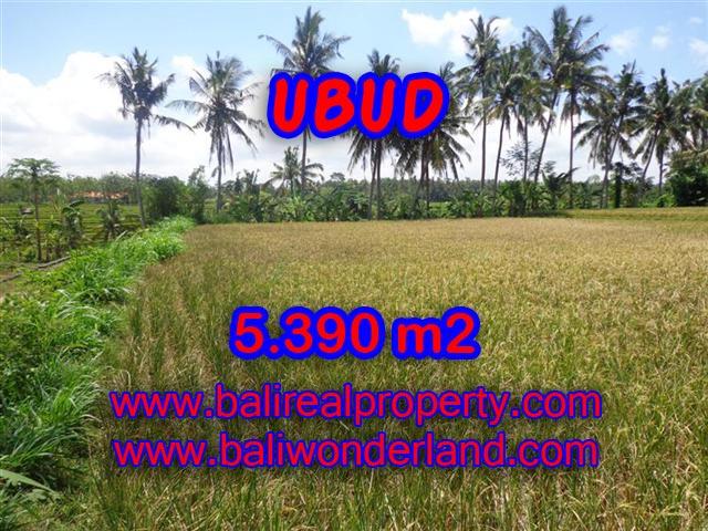 Land for sale in Ubud Bali, Unbelievable view in Ubud Mas – TJUB342
