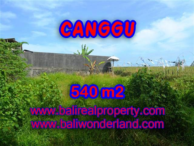 Land for sale in Bali, spectacular view in Canggu Bali – TJCG131