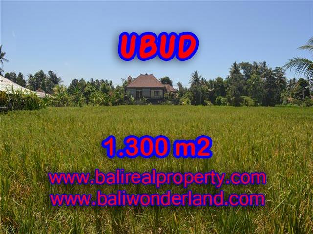Land in Ubud for sale, Amazing view in Ubud Center  Bali – TJUB386