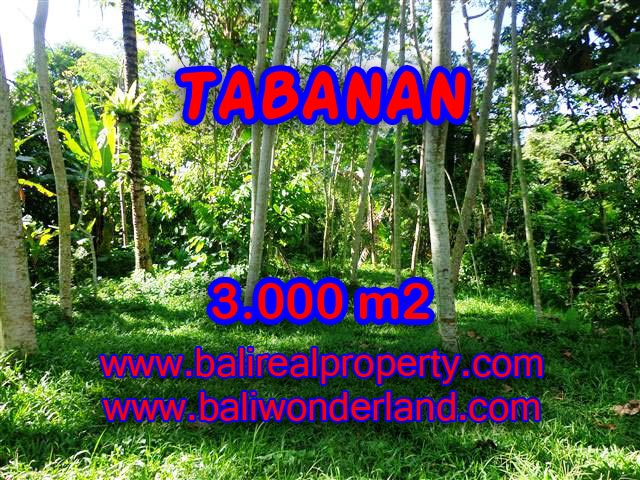 Property in Bali for sale, Fantastic view in Tabanan Penebel – TJTB109