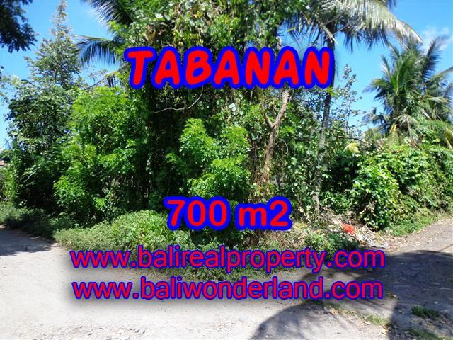 Fantastic Property for sale in Bali, land sale in Tabanan Bali – TJTB107