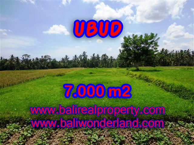 Land in Ubud for sale, Attractive view in Ubud Center Bali – TJUB381