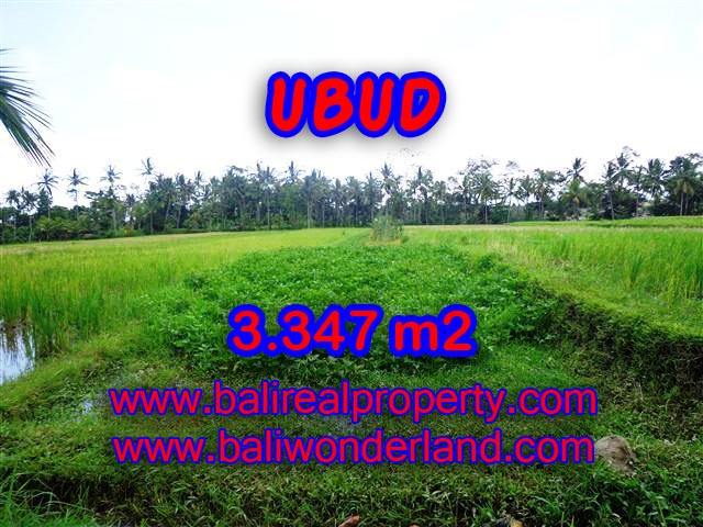 Land in Ubud Bali for sale, Exotic view in Ubud Center – TJUB380