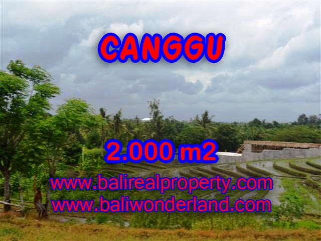Land in Bali for sale, Outstanding view in Canggu Babakan Bali – TJCG133