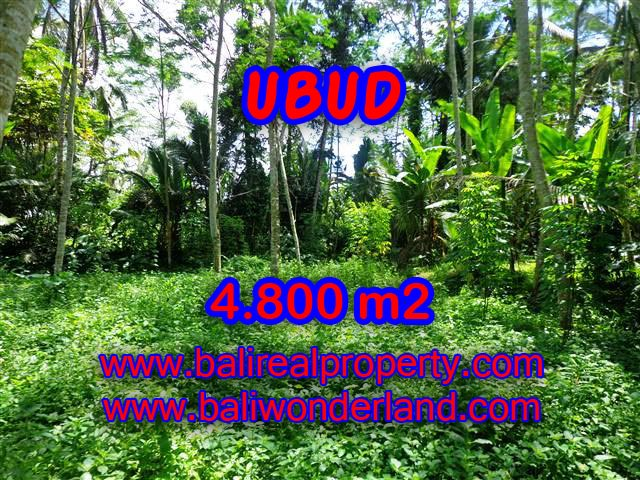 Fantastic Land for sale in Ubud Bali, green lush view by the creek in Ubud Tegalalang – TJUB382