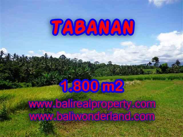 Property sale in Bali, Beautiful land in Tabanan for sale – TJTB106