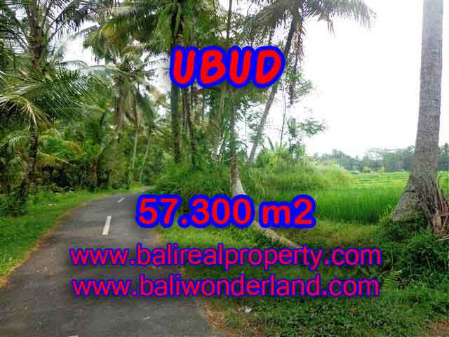 Magnificent Property for sale in Bali, land for sale in Ubud Bali – TJUB377