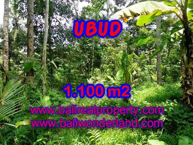 Land for sale in Ubud Bali, Unbelievable view in Ubud Tampak siring – TJUB378