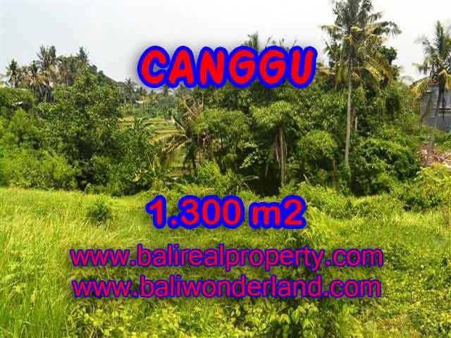 Land for sale in Bali, wonderful view in Canggu Bali – TJCG136