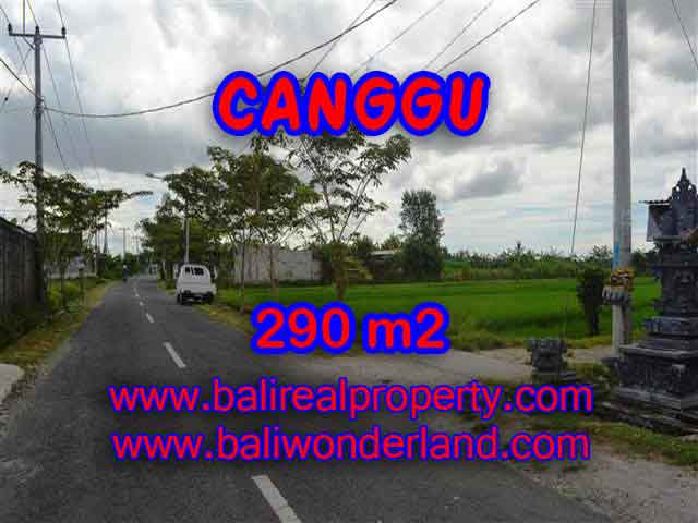 Outstanding Property for sale in Bali, land for sale in Canggu Bali – TJCG141
