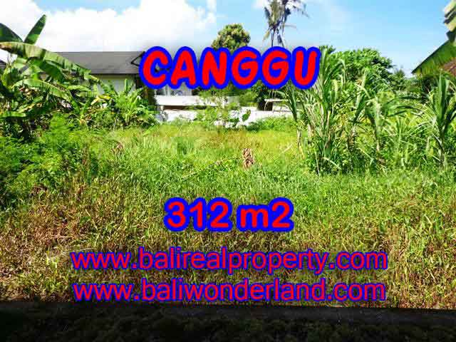 Beautiful Property for sale in Bali, land for sale in Canggu  – TJCG145