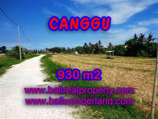 Stunning Property for sale in Bali land sale in Canggu Bali – TJCG146