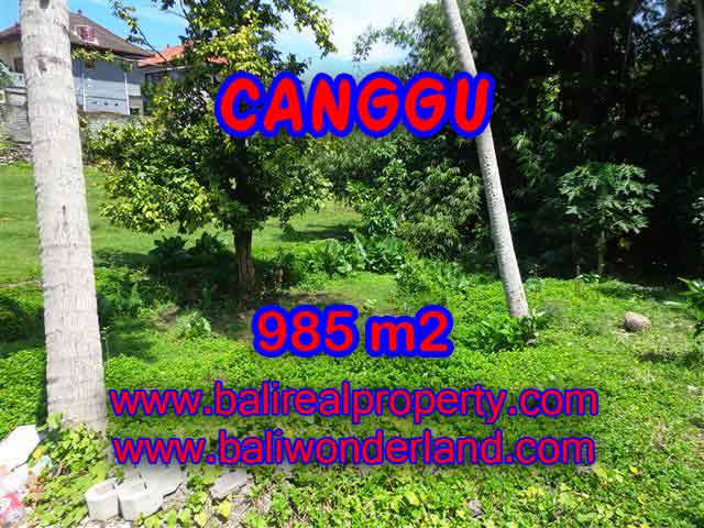 Property in Bali for sale, Astonishing land for sale in Canggu Bali – TJCG147