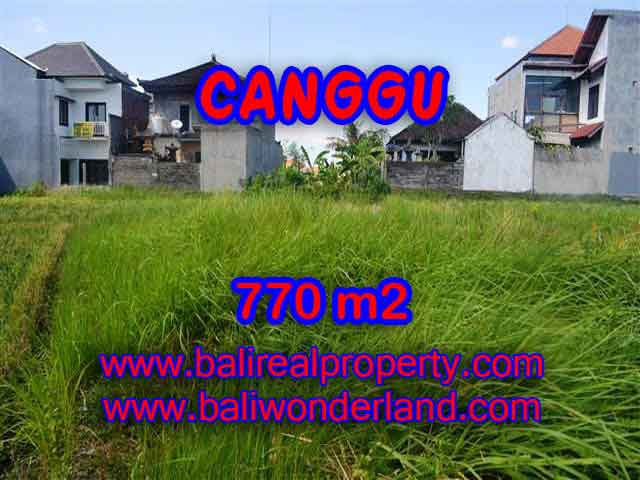 Astounding Property in Bali for sale, Rice fields view land in Canggu Bali – TJCG148