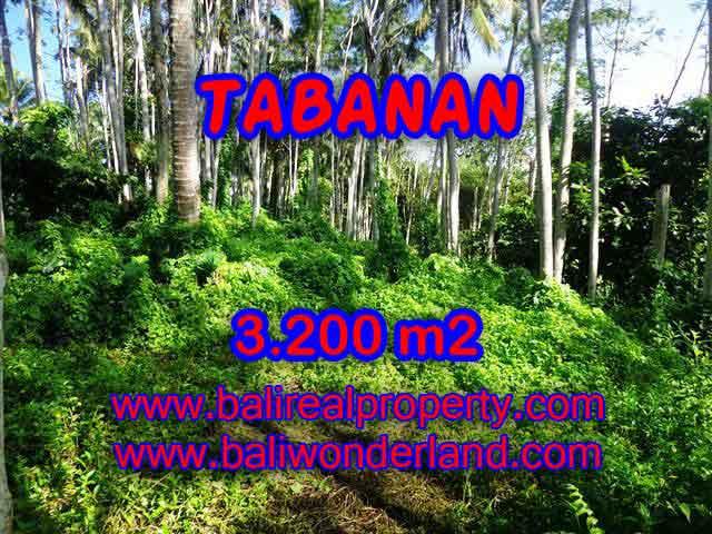 Land in Tabanan for sale, Attractive view in Tabanan Penebel Bali – TJTB120