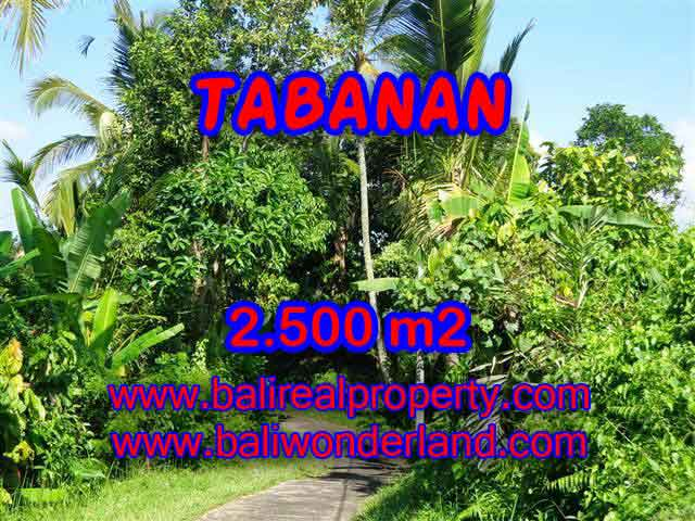 Land for sale in Tabanan Bali, Magnificent view in Tabanan Penebel – TJTB122
