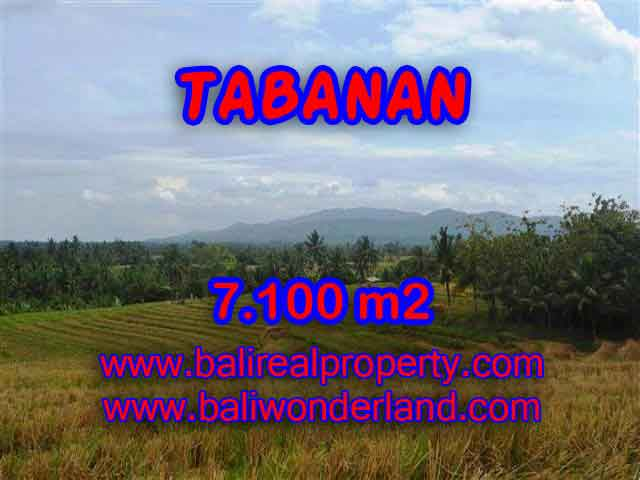 Land in Tabanan for sale, Amazing view in Tabanan Selemadeg Bali – TJTB125