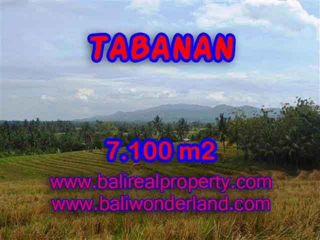 Land in Tabanan for sale, Amazing view in Tabanan Selemadeg Bali – TJTB125