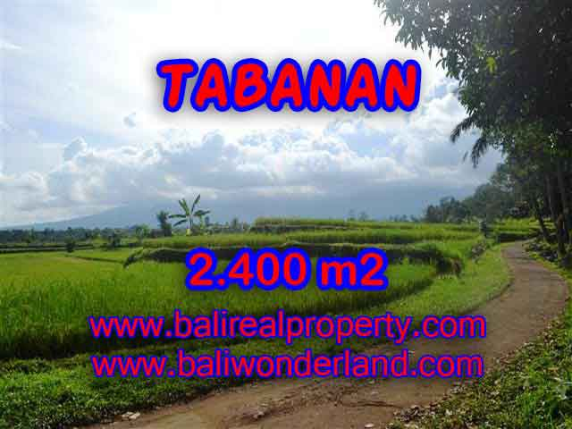 Exotic LAND FOR SALE IN TABANAN Bali, mountain and ricefields view in Tabanan Baturiti– TJTB126