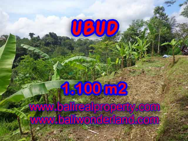 Fantastic Land for sale in Bali, Ricefield view by valley in Ubud Tegalalang– TJUB407