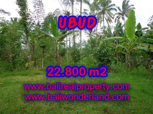 Land for sale in Bali, spectacular view in Ubud Bali – TJUB409
