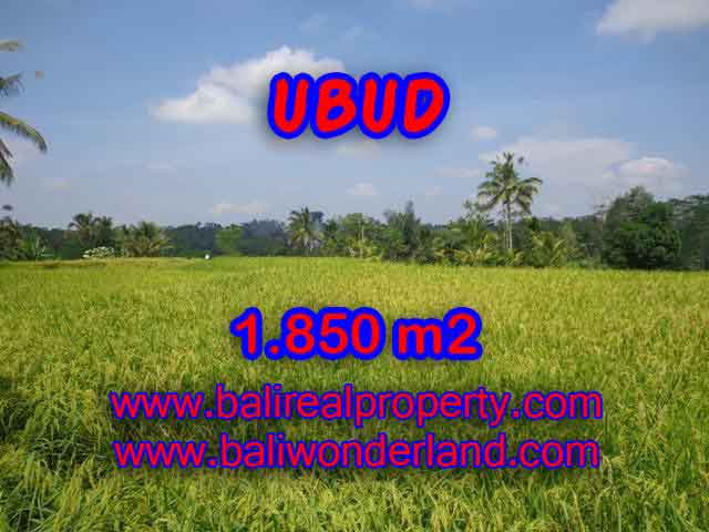 Land in Bali for sale, Stunning view in Ubud Bali – TJUB410