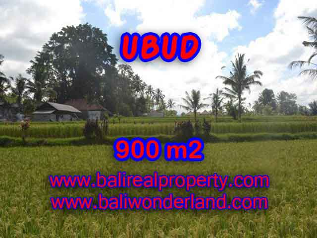 Stunning Land for sale in Bali, Rice fields and mountan view in Ubud Bali - TJUB412
