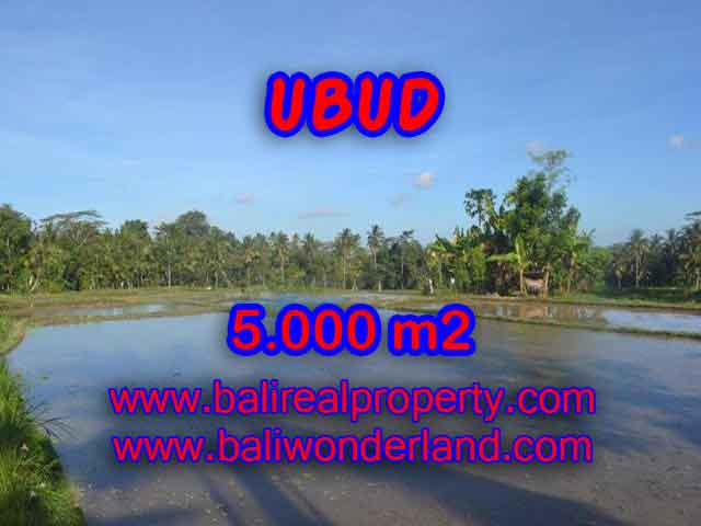 Land for sale in Bali, magnificent view Ubud Bali – TJUB413