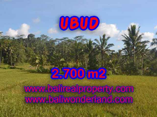 Land for sale in Bali, wonderful view in Ubud Bali – TJUB414