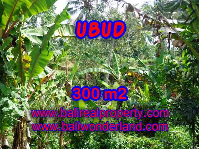 Land in Bali for sale, great view in Ubud Bali – TJUB415