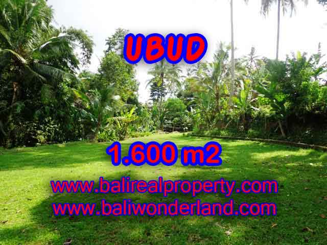 Amazing Land in Bali for sale in Ubud Center Bali – TJUB416