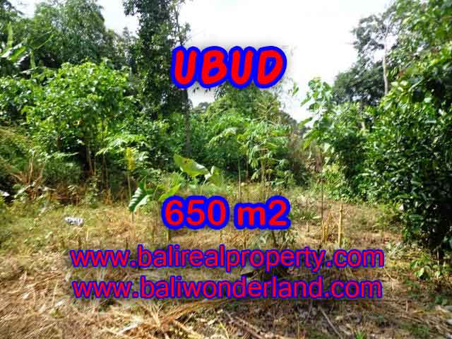 Beautiful Land for sale in Bali, Rice fields view by the small river in Ubud Bali – TJUB417